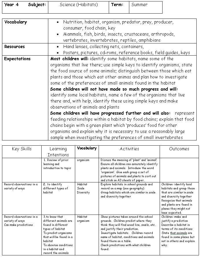 new york state lesson plan template