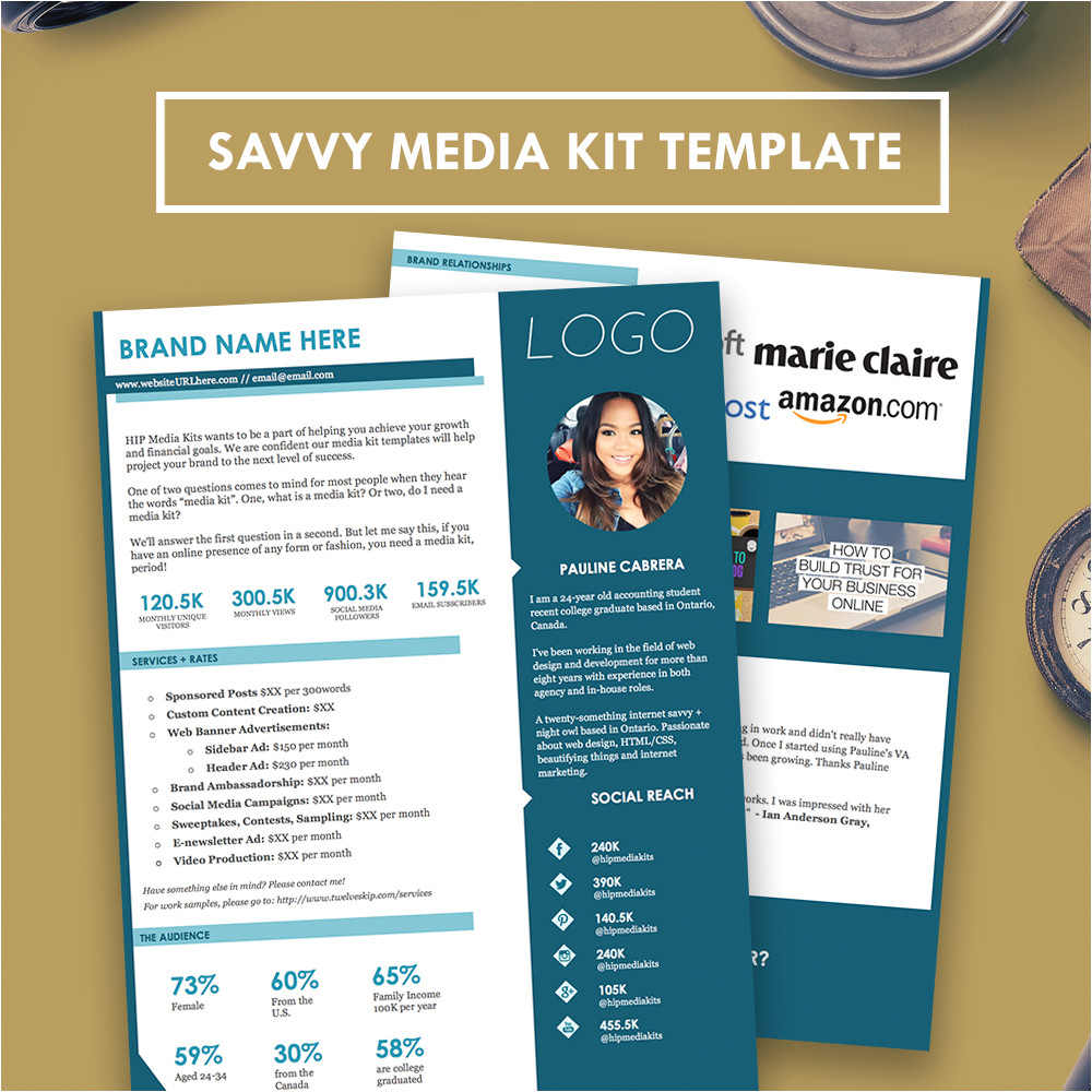 savvy professional media kit press kit