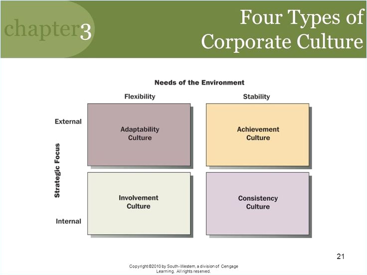 organizational culture assessment instrument template