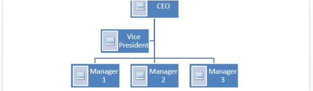 organogram example