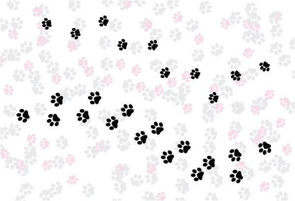 paw print powerpoint template quick tip how to create a simple paw print scatter brush in adobe ideas