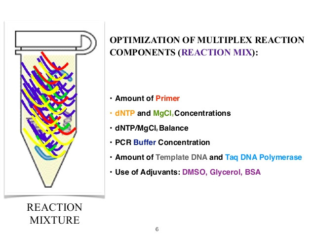 multiplex pcr master mix recipe