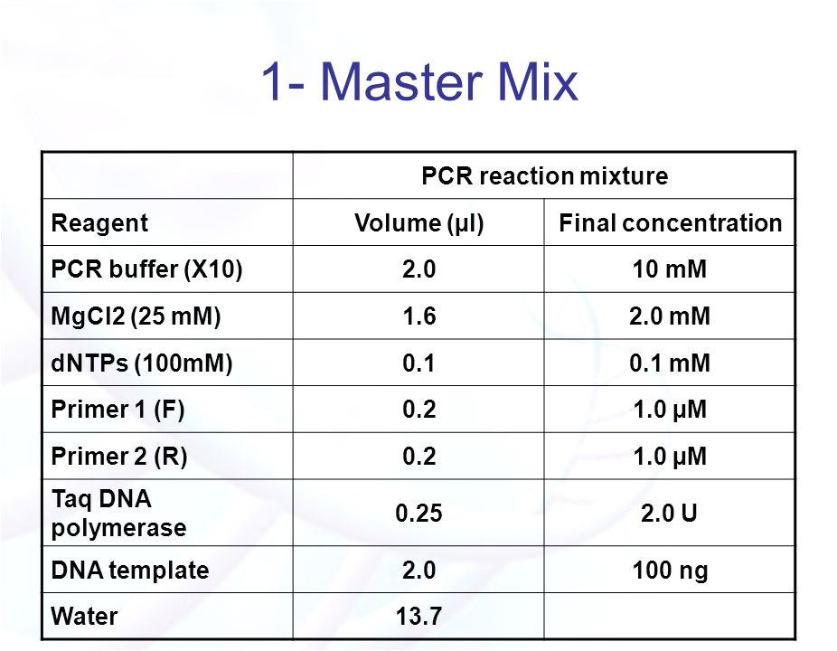 Pcr Template Amount the Polymerase Chain Reaction Pcr Ppt Video Online