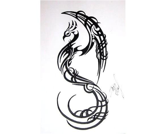 phoenix bird art drawing