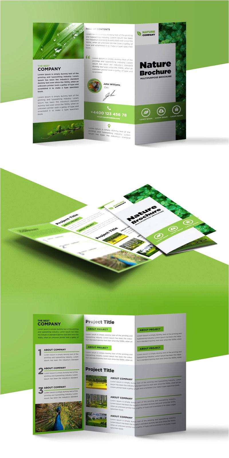 nature tri fold brochure template free psd