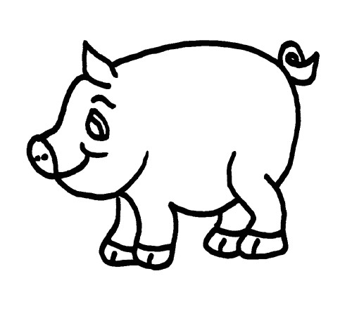 pig template for preschoolers