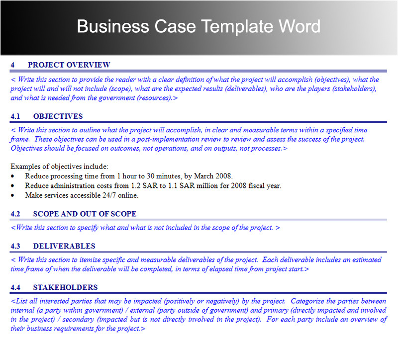 business case template 5388
