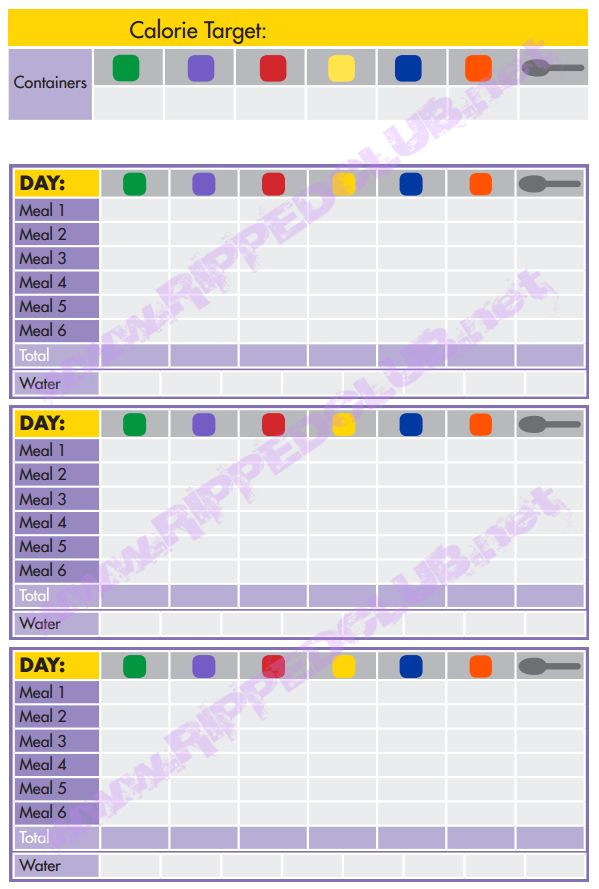 Portion Control Template Fix 21 Day Meal Plan Template 21 Day Fix Nutrition Plan