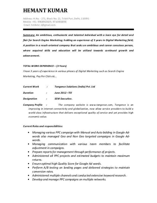 sem executive ppc resume