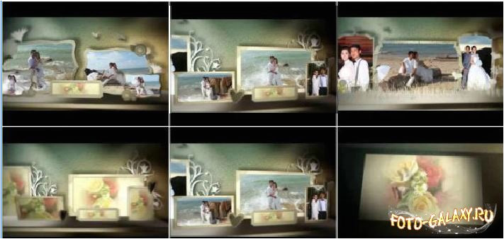 18941 3d wedding photo album project for proshow producer