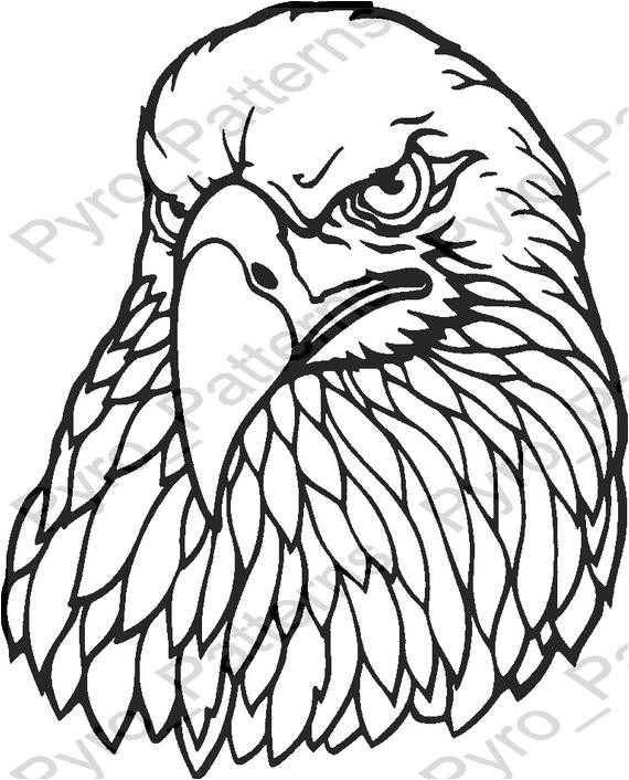 pyrography wood burning eagle head bird
