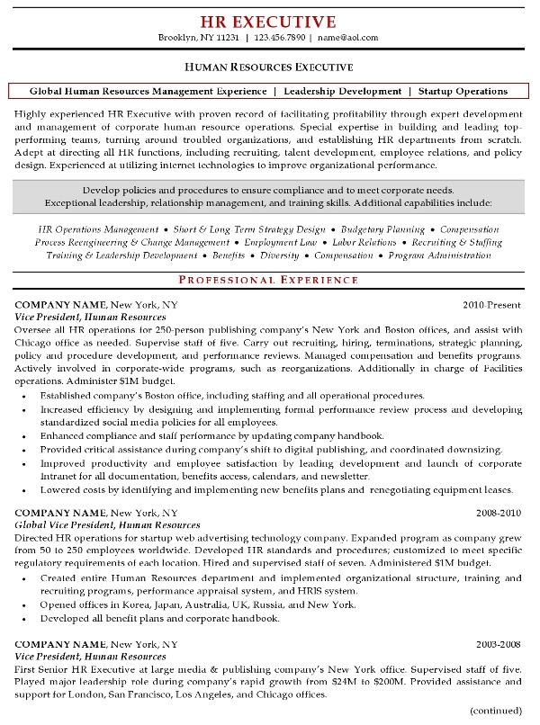 resume sample 17 human resources executive