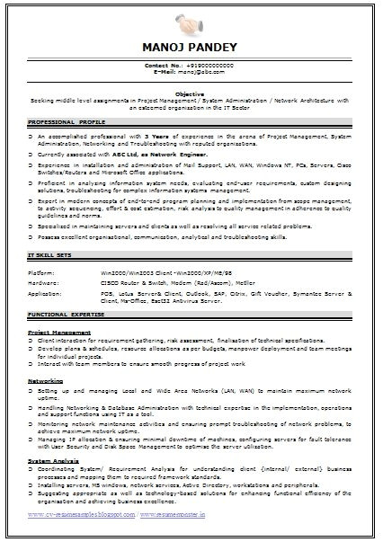 professional resume format for experienced free download