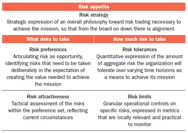 risk appetite tolerances and limits tying the pieces together