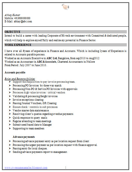 experience accountant resume sample