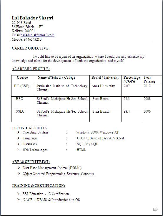 resume sample computer science