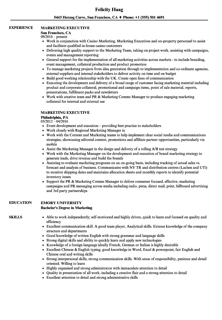 Sample Resume for Marketing Executive Position Marketing Executive Resume Samples Velvet Jobs