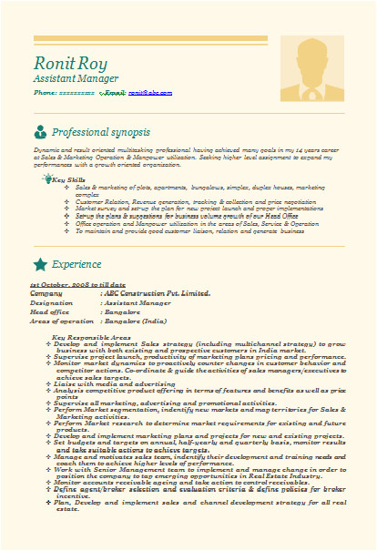 resume samples for experienced professional