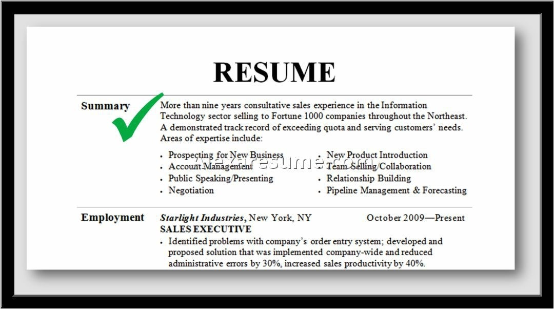 professional summary on resume 1950
