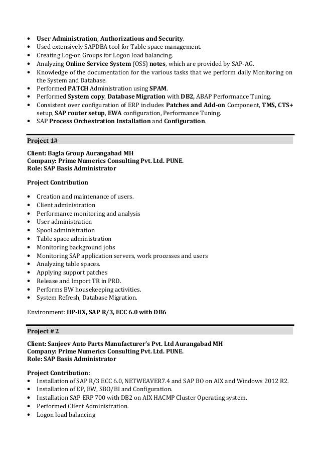 Sap Basis Administrator Resume Sample Write My Essay Frazier A Good Essay Writing Service with