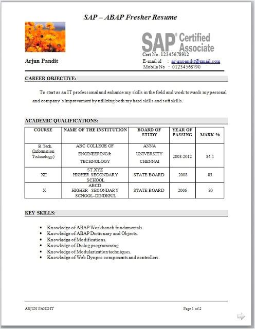 Sap Resume Samples for Freshers Sample Sap Abap Fresher Cv format