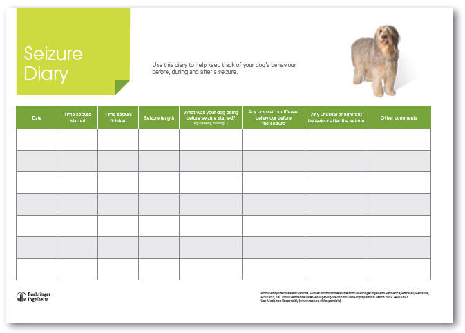 monitoring your dogs seizures