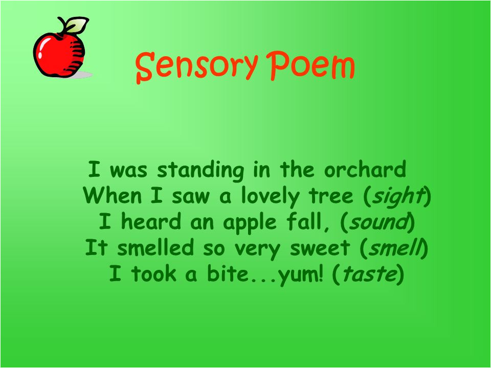 Sensory Poem Template by Mrs Hicks Poetry Samples by Susan Silverman An Apple A