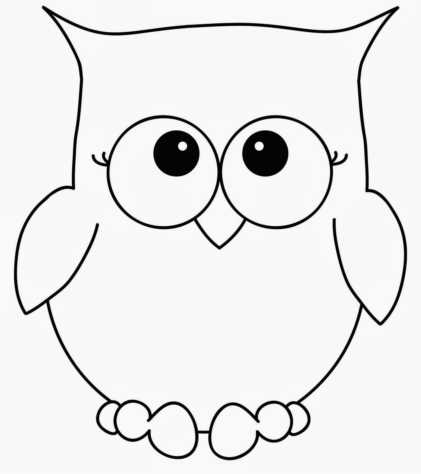 cute lil owl