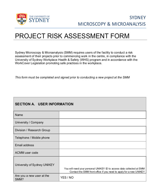 Task Risk assessment Template Sample Project assessment Froms 10 Free Documents In