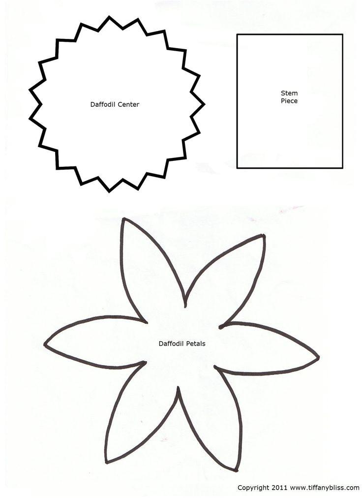 daffodil images