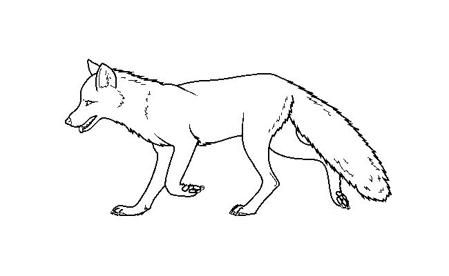 fox templates