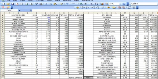 excel spreadsheets templates 4