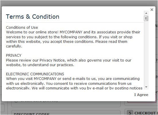 terms and conditions for online store template