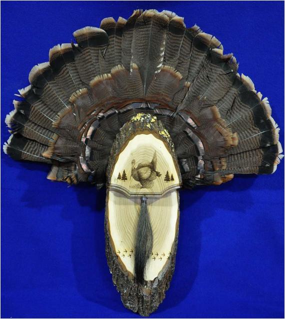Turkey Fan Mount Template Turkey Hunting Turkey Fan Turkey Fan Mount Turkey Fan