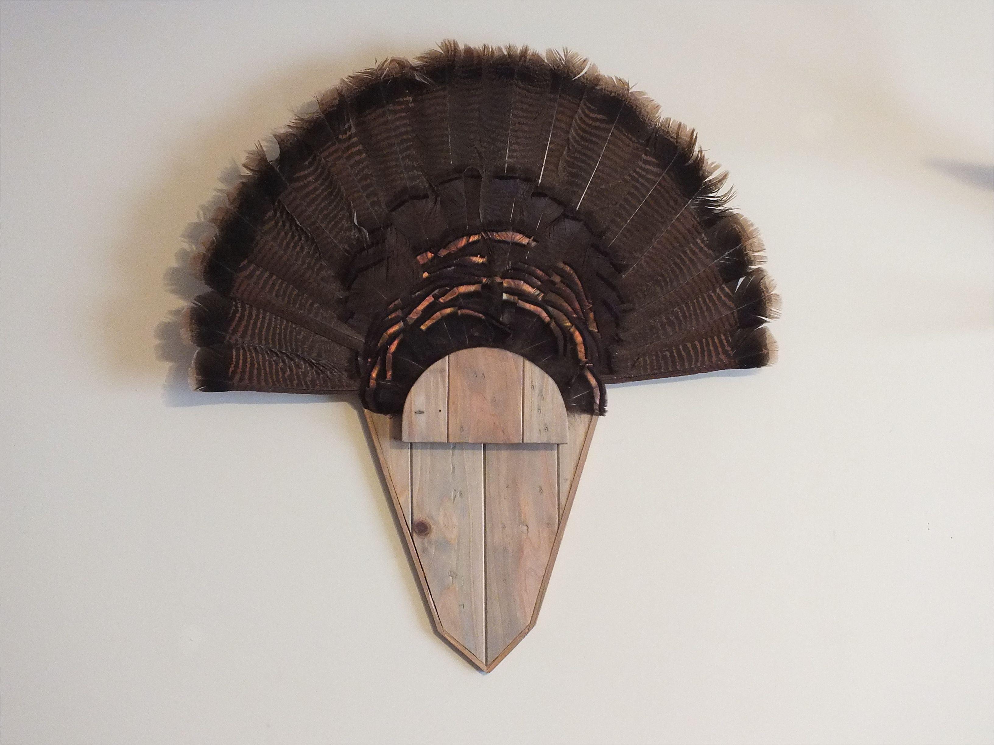 Turkey Fan Mount Template Weathered Oak Turkey Fan Mount Harvest Plaques Turkey