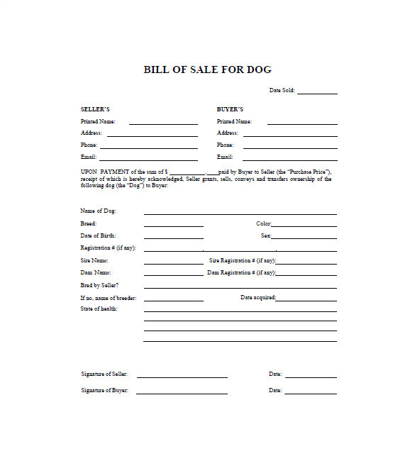 Veterinary Receipt Template Dog Bill Of Sale Template 13 Free Word Excel Pdf