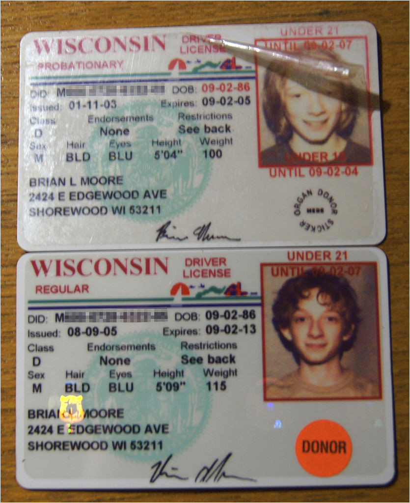 post wisconsin drivers license template 654031