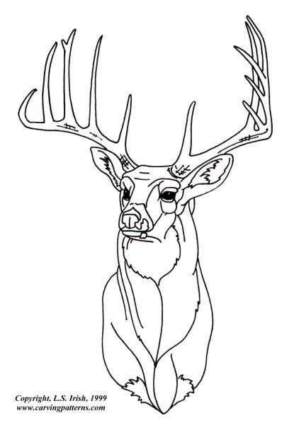 Wood Burning Templates Free Download Deer Wood Burning Patterns Www Pixshark Com Images