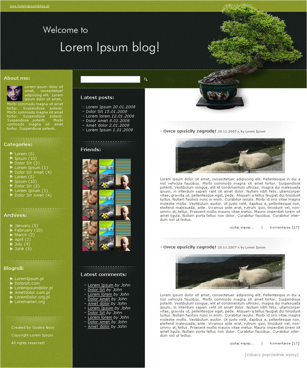 wordpress blog template 73866476