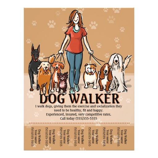 dog walker dog walking advertising template flyer 244562846474640117