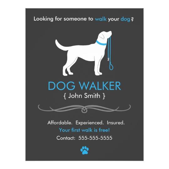 dog walker walking business flyer template 244325788484821549