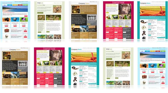 newsletter template samples