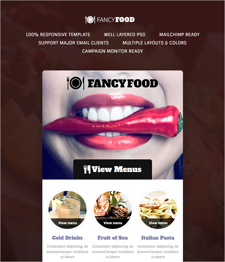 Fancy Email Templates Fancyfood Email Template Buy Premium Fancyfood Email Template