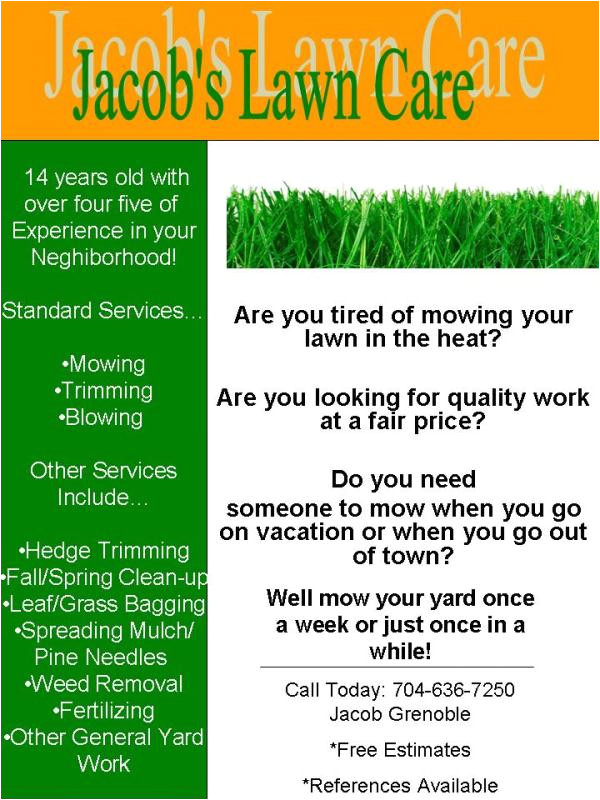my lawn care flyer what do you think 281413