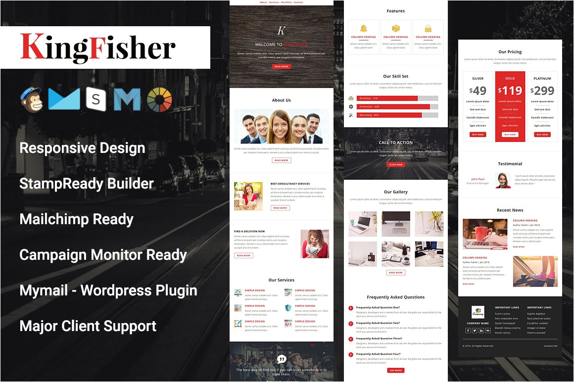 507243 kingfisher responsive email template