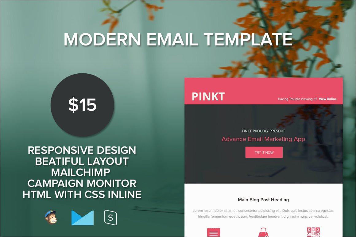357982 pinkt responsive email template
