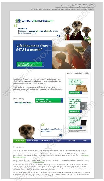 email design insurance