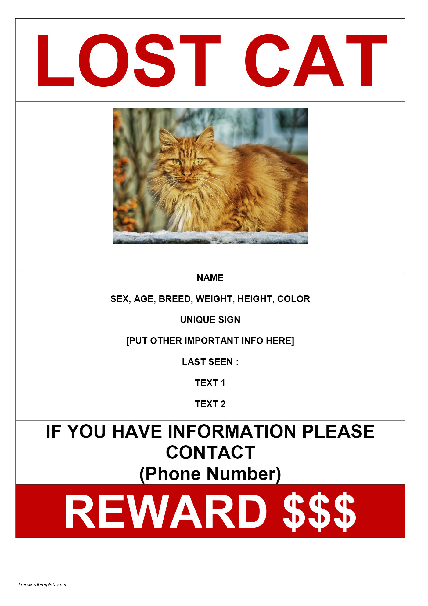 missing cat poster sample