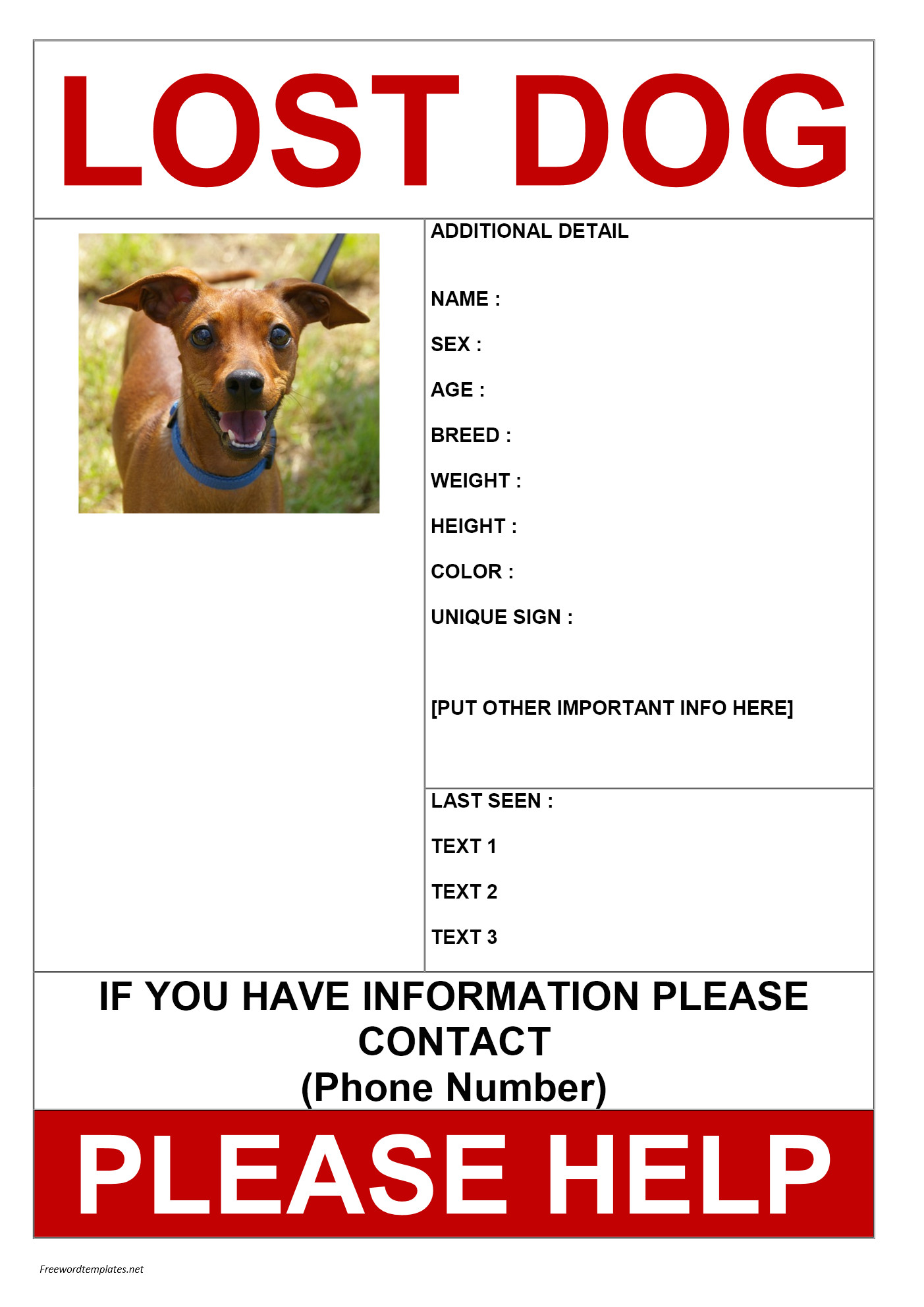 Lost Dog Flyer Template Word Missing Dog Poster