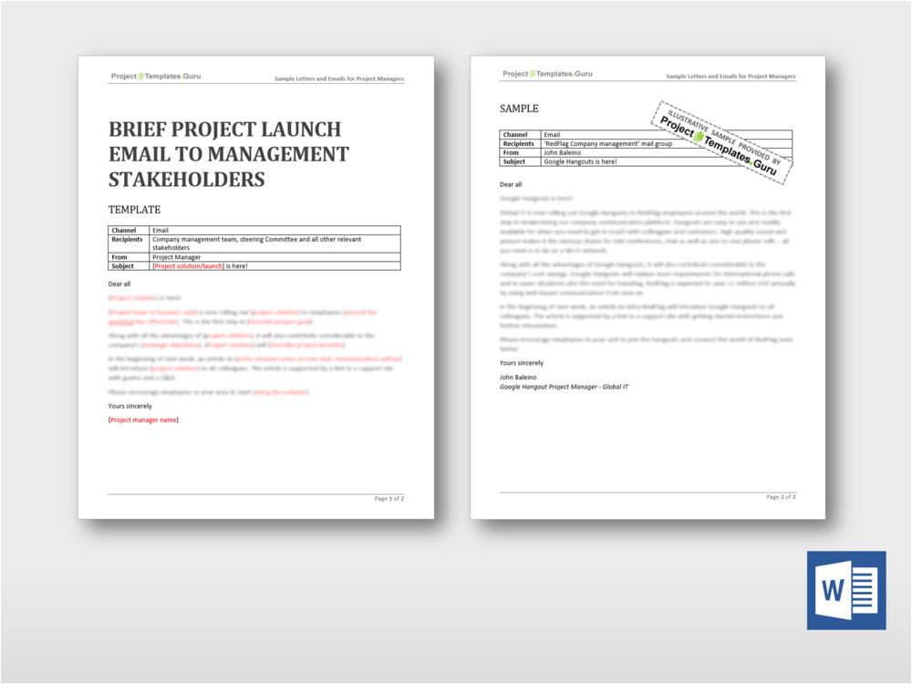 brief project launch email management stakeholders